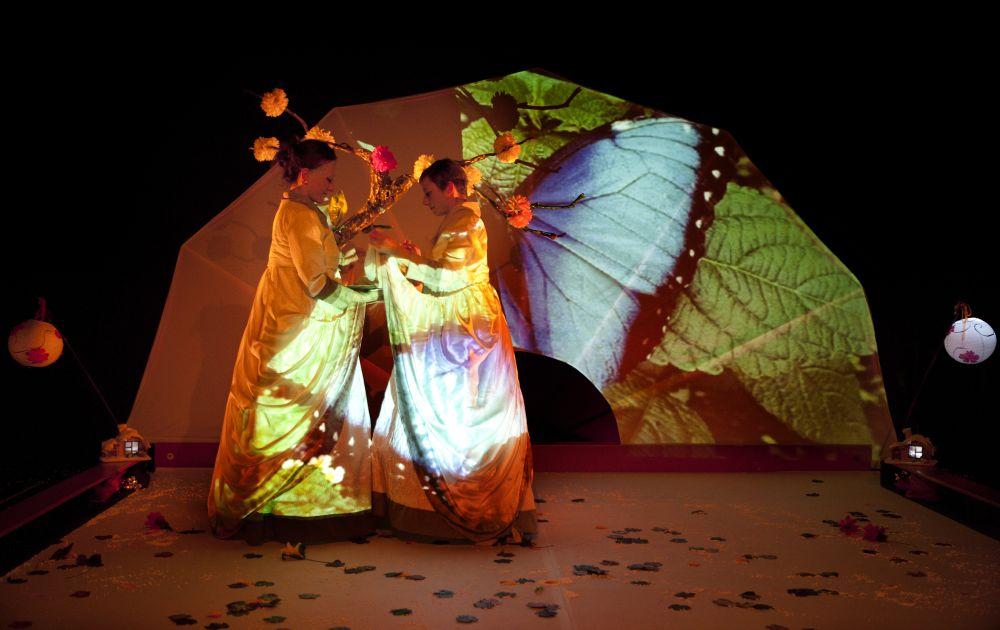 Cucu-Haiku-nacen-las-mariposas